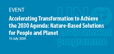 Accelerating Transformation to Achieve the 2030 Agenda: Nature-Based Solutions for People and Planet