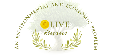 Olive diseases, an environmental and economic problem