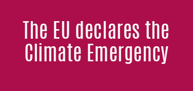 """The European Parliament approved on Thursday a resolution to declare the """"climate emergency"""" in the EU"""