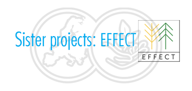 EFFECT project