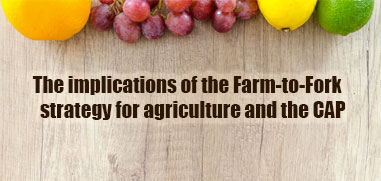 The implications of the Farm-to-Fork strategy for agriculture and the CAP