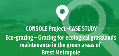 Eco-grazing - Grazing for ecological grasslands