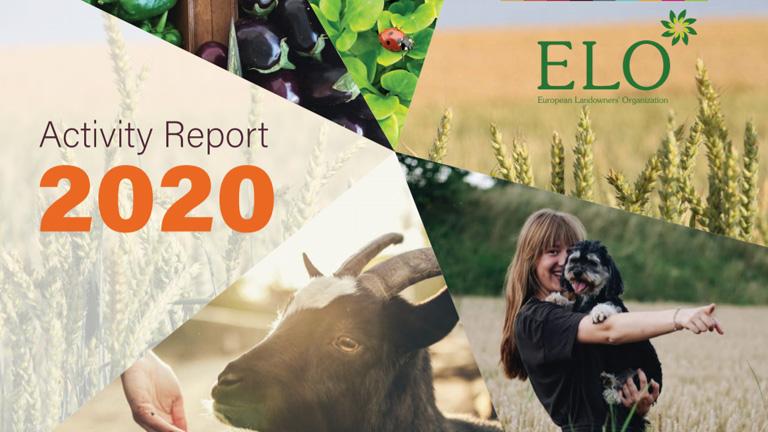 ELO Activity Report 2020